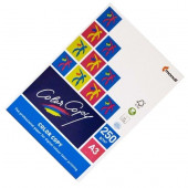 PAPIR COLOR COPY A3 250g CC325 125/1